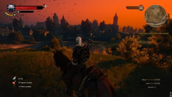 Geralt and Roach enjoying the view